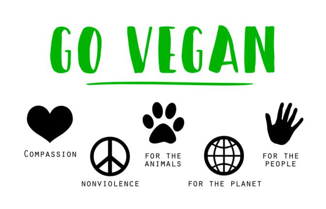 Diário de uma Vegetariana!