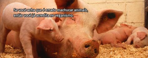 capa-facebook-veganismo-6